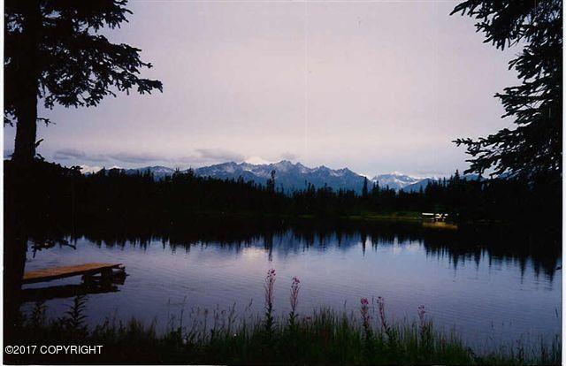000 No Road Trapper Lake, Trapper Creek, AK - USA (photo 3)