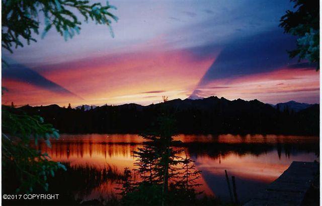 000 No Road Trapper Lake, Trapper Creek, AK - USA (photo 4)