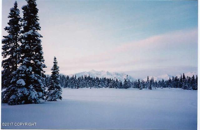000 No Road Trapper Lake, Trapper Creek, AK - USA (photo 5)