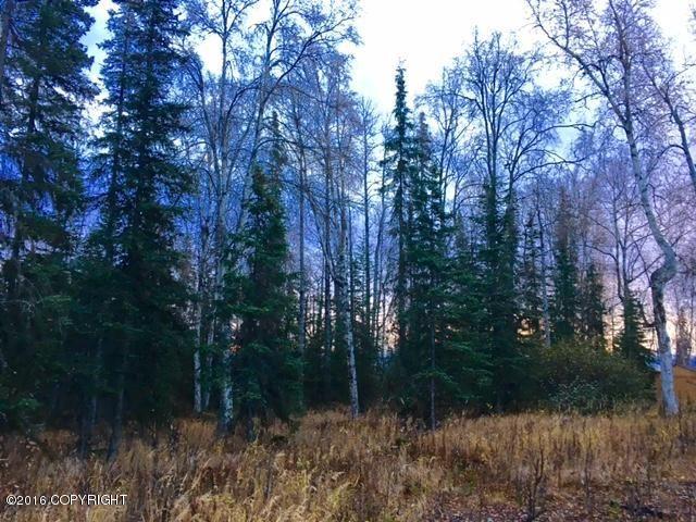 L4 Eldon Circle, Soldotna, AK - USA (photo 1)