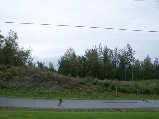 1845 N Monte Vista Drive, Palmer, AK - USA (photo 4)