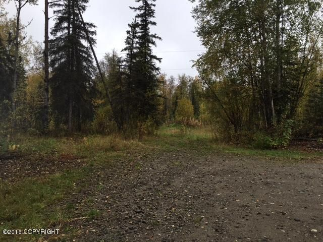 13447 N Willow Drive, Willow, AK - USA (photo 1)