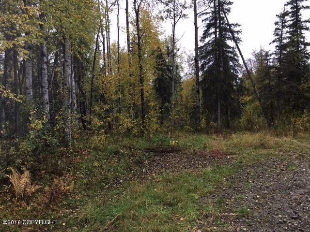 13447 N Willow Drive, Willow, AK - USA (photo 2)