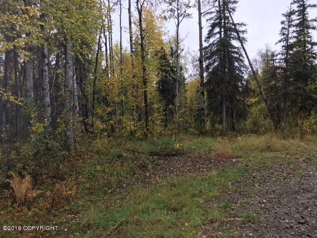 13447 N Willow Drive, Willow, AK - USA (photo 3)
