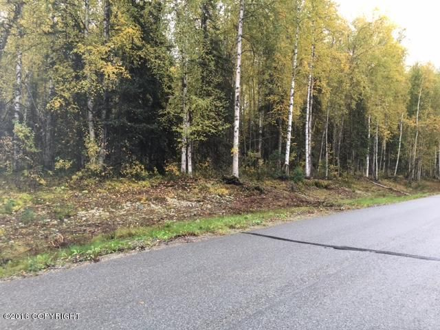 13447 N Willow Drive, Willow, AK - USA (photo 4)
