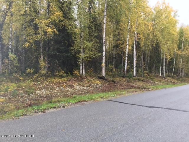 13447 N Willow Drive, Willow, AK - USA (photo 5)