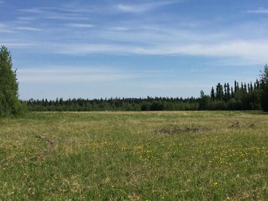4184 Tanana Loop, Delta Junction, AK - USA (photo 4)