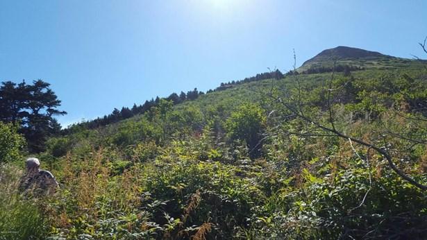 000 Vacant Land, Anchorage, AK - USA (photo 1)
