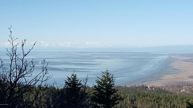 000 Vacant Land, Anchorage, AK - USA (photo 3)