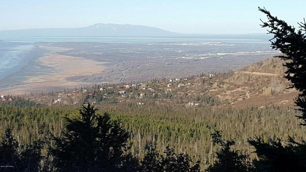 000 Vacant Land, Anchorage, AK - USA (photo 4)