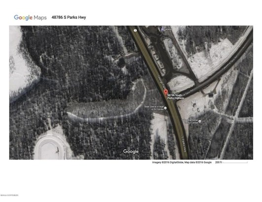 48786 S Parks Highway, Talkeetna, AK - USA (photo 1)
