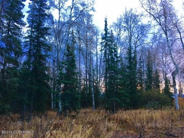 L3 Eldon Circle, Soldotna, AK - USA (photo 1)