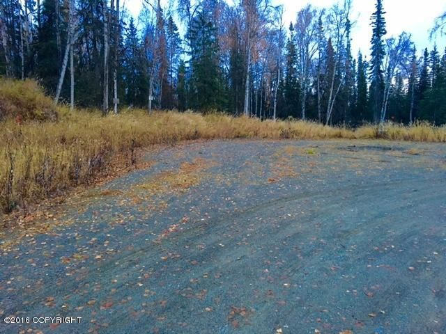 L3 Eldon Circle, Soldotna, AK - USA (photo 4)