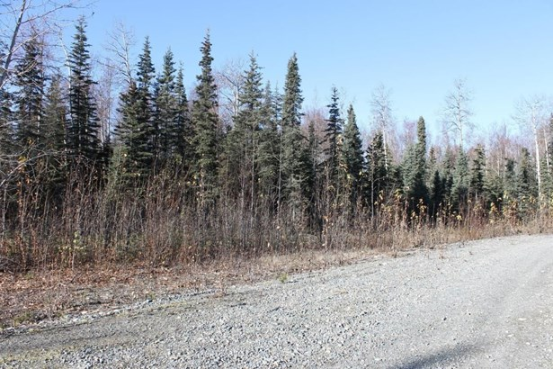 69088 S Denali Vista Drive, Willow, AK - USA (photo 1)