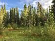 Mi 183.3 Glenn Highway, Glennallen, AK - USA (photo 1)