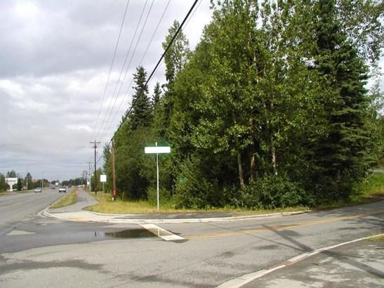 12865 Old Seward Highway, Anchorage, AK - USA (photo 1)