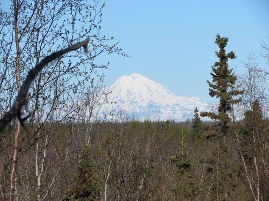 25015 Arctic Fox Road, Kasilof, AK - USA (photo 1)