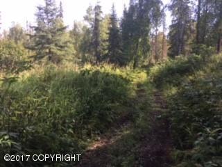 23972 S Hugo Loop, Trapper Creek, AK - USA (photo 1)