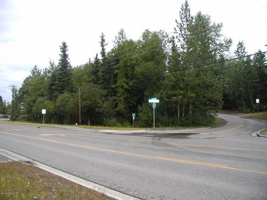 12875 Old Seward Highway, Anchorage, AK - USA (photo 1)