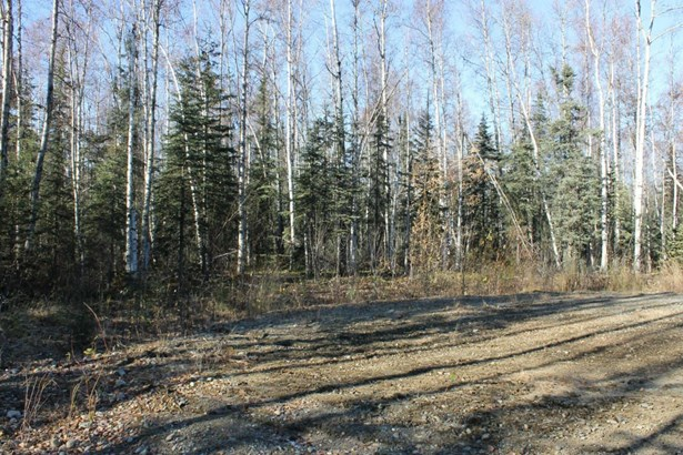 69210 S Mckinley Vista Loop, Willow, AK - USA (photo 3)