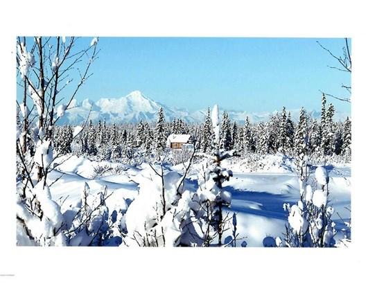 68664 Tall Tree Avenue, Anchor Point, AK - USA (photo 2)