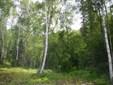 6165 S Headrick Circle, Big Lake, AK - USA (photo 1)