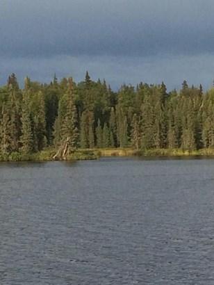 Tr F No Road Trail, Trapper Creek, AK - USA (photo 1)