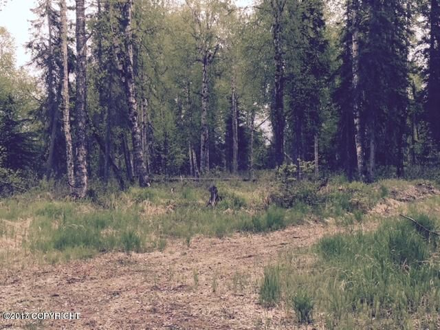 18201 E Stark Avenue, Willow, AK - USA (photo 4)