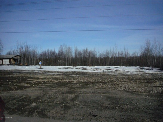 13793 W Big Lake Road, Big Lake, AK - USA (photo 2)