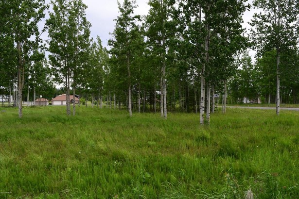 37747 Luscombe Circle, Sterling, AK - USA (photo 1)