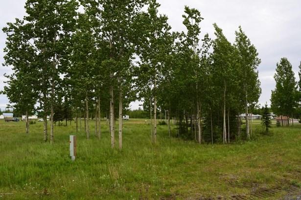 37747 Luscombe Circle, Sterling, AK - USA (photo 2)