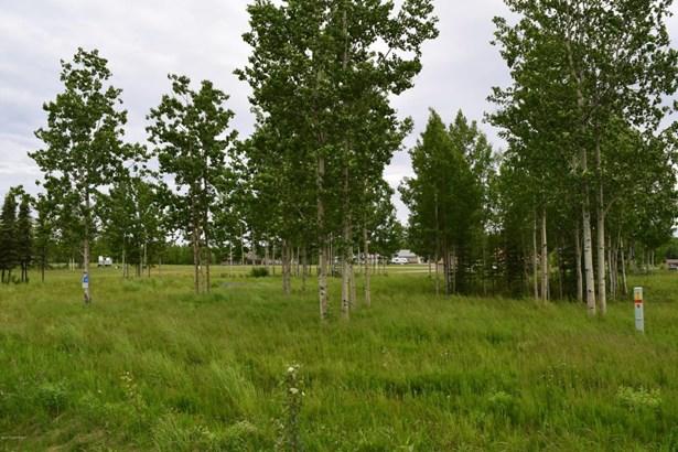 37747 Luscombe Circle, Sterling, AK - USA (photo 3)