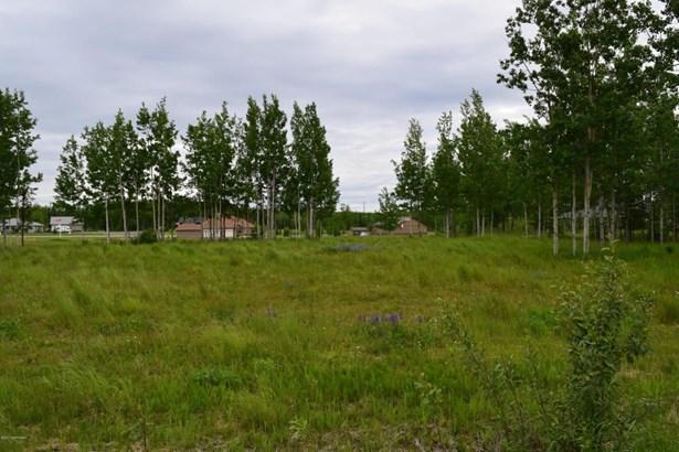 37747 Luscombe Circle, Sterling, AK - USA (photo 4)