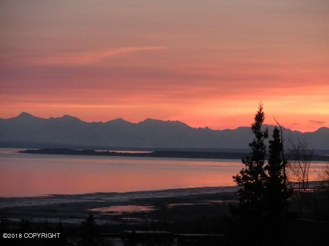 15910 Elizabeth Street, Anchorage, AK - USA (photo 4)