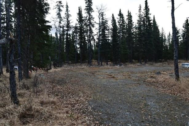 L2 Arctic Avenue, Kasilof, AK - USA (photo 1)