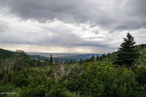 15701 Newell Drive, Anchorage, AK - USA (photo 5)