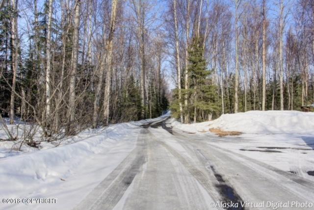 2720 De Armoun Road, Anchorage, AK - USA (photo 3)