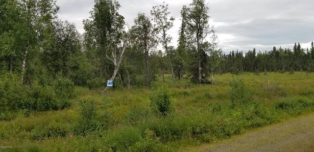 51835 Dykstra Avenue, Kasilof, AK - USA (photo 1)