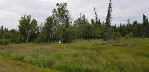 51835 Dykstra Avenue, Kasilof, AK - USA (photo 3)