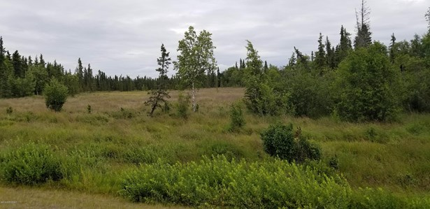 51835 Dykstra Avenue, Kasilof, AK - USA (photo 4)