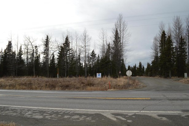 10675 Sterling Highway, Ninilchik, AK - USA (photo 1)