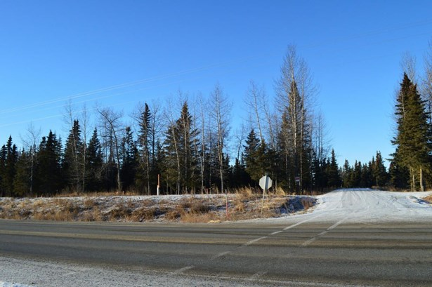 10675 Sterling Highway, Ninilchik, AK - USA (photo 3)