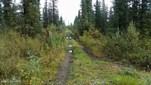 Mi 138.5 Glenn, Glennallen, AK - USA (photo 1)