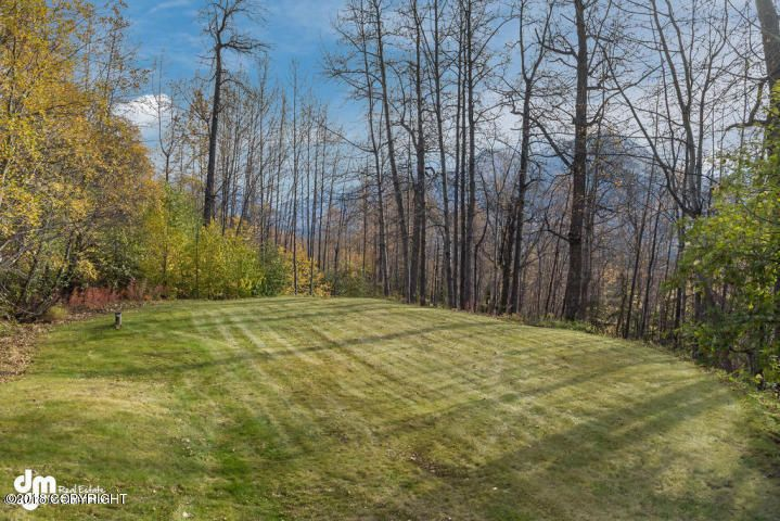 21738 Price Drive, Eagle River, AK - USA (photo 4)