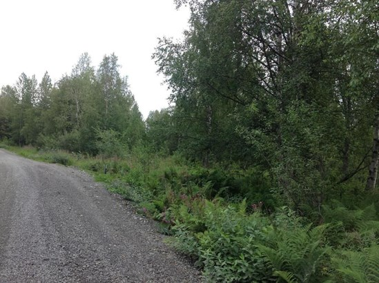 9738 E Susitna Road, Trapper Creek, AK - USA (photo 1)