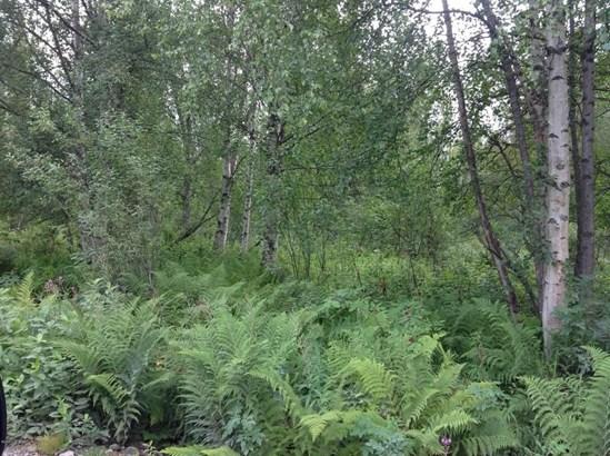 9738 E Susitna Road, Trapper Creek, AK - USA (photo 2)