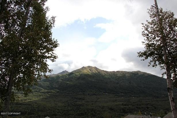 20684 Mountain Vista Drive, Eagle River, AK - USA (photo 3)