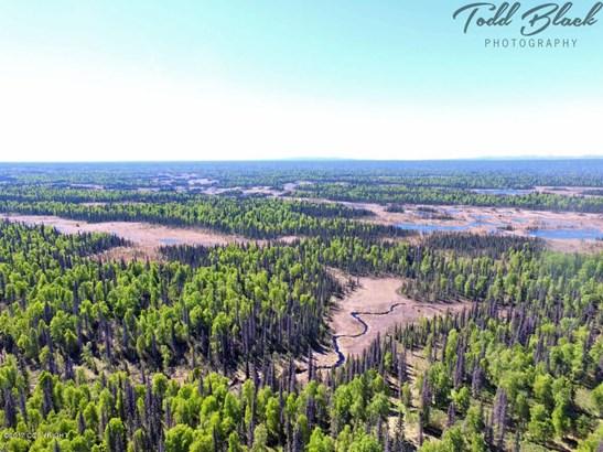Mp 126 S Parks Highway, Trapper Creek, AK - USA (photo 2)