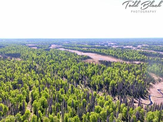 Mp 126 S Parks Highway, Trapper Creek, AK - USA (photo 3)