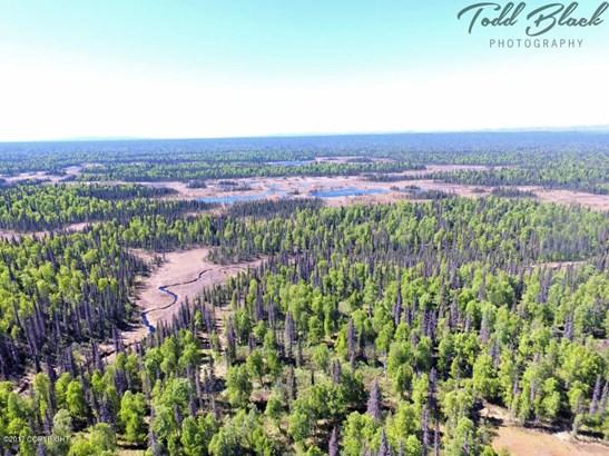 Mp 126 S Parks Highway, Trapper Creek, AK - USA (photo 4)